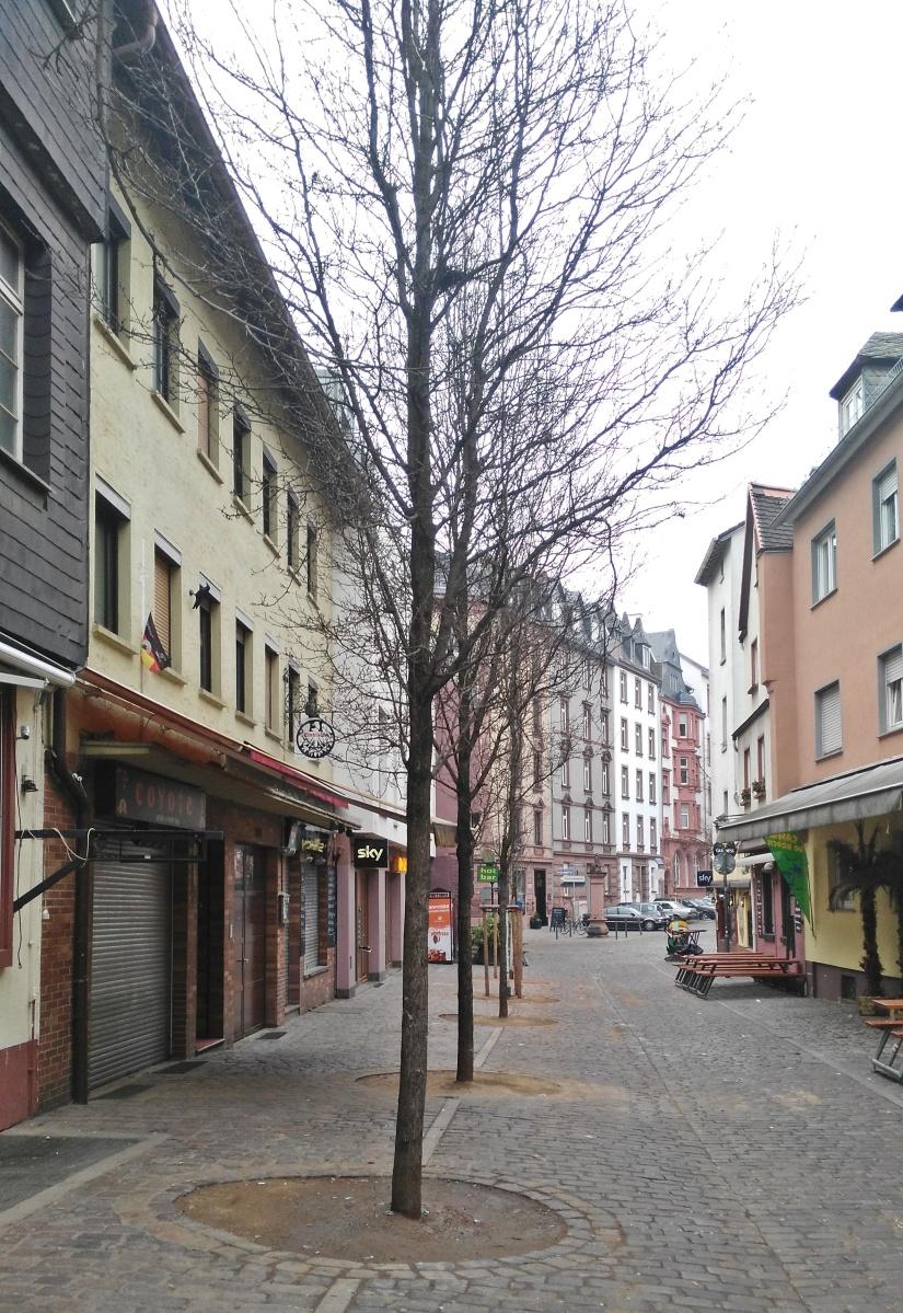 Frankfurt 37