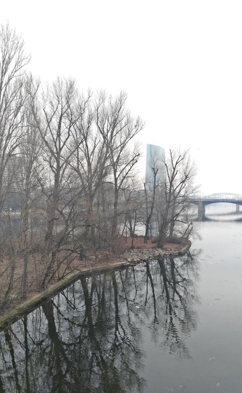 Frankfurt 40